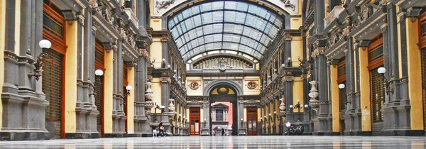 Flex and the City Naples